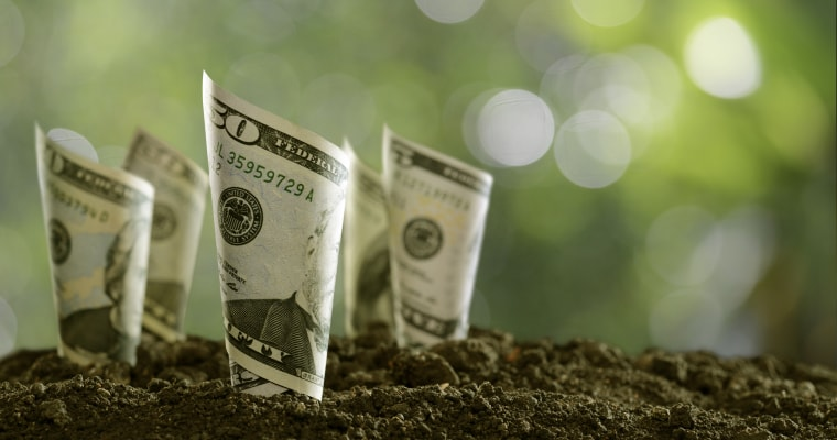 The Different Types of small business loans